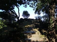 2005_11220036
