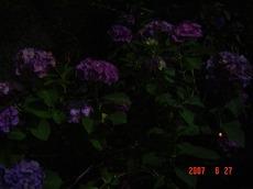 2007_0627070626tonai0032
