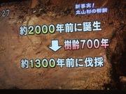 2010_0513071003tonai0027