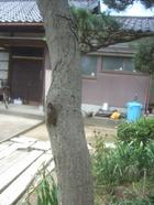 2011_0801071003tonai0024