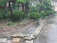Rain_010
