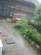 Rain_029