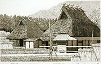 Tanaka_harvestseason3