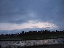 2010_0531071003tonai0012