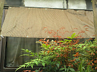 Img_20120624_1659361