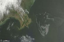 Gulf_of_mexico_oil_spill_may_1_crop
