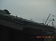 Sscn2128