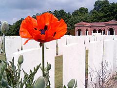 800pxhigh_wood_cemetery_france_2