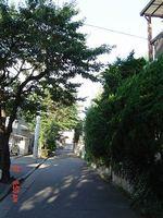 s-DSC00946