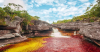 800pxflashpacker_connect__cano_cristales