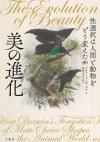 Bird_20201110201001