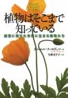 Plant_20210328125201